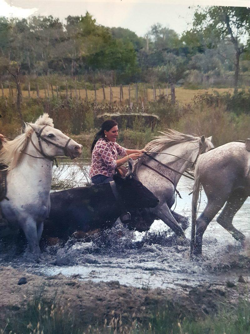 Laura Drivon chevauchant chevaux camarguais